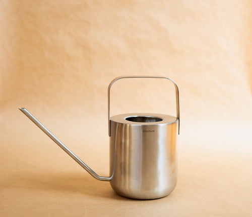 Stainless Steel Watering Can 34-ounce