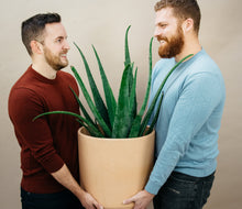 Two smiling men holding a large Aloe Vera plant in a terra cotta pot in front of a beige background.
