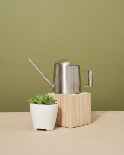 Arthur Stainless Steel Watering Can