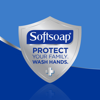 Softsoap Hand Soap Soothing Clean aloe vera fresh scent 50 oz - 1.47 L
