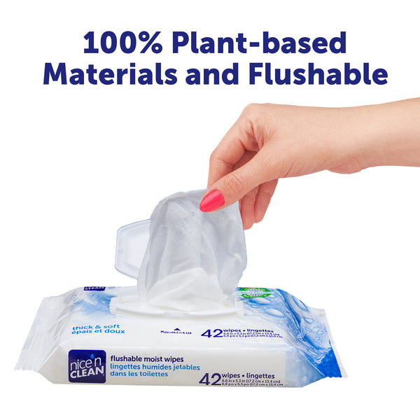 Nice n Clean Flushable Wipes 5 Packs of 60 Wipes = 300 total