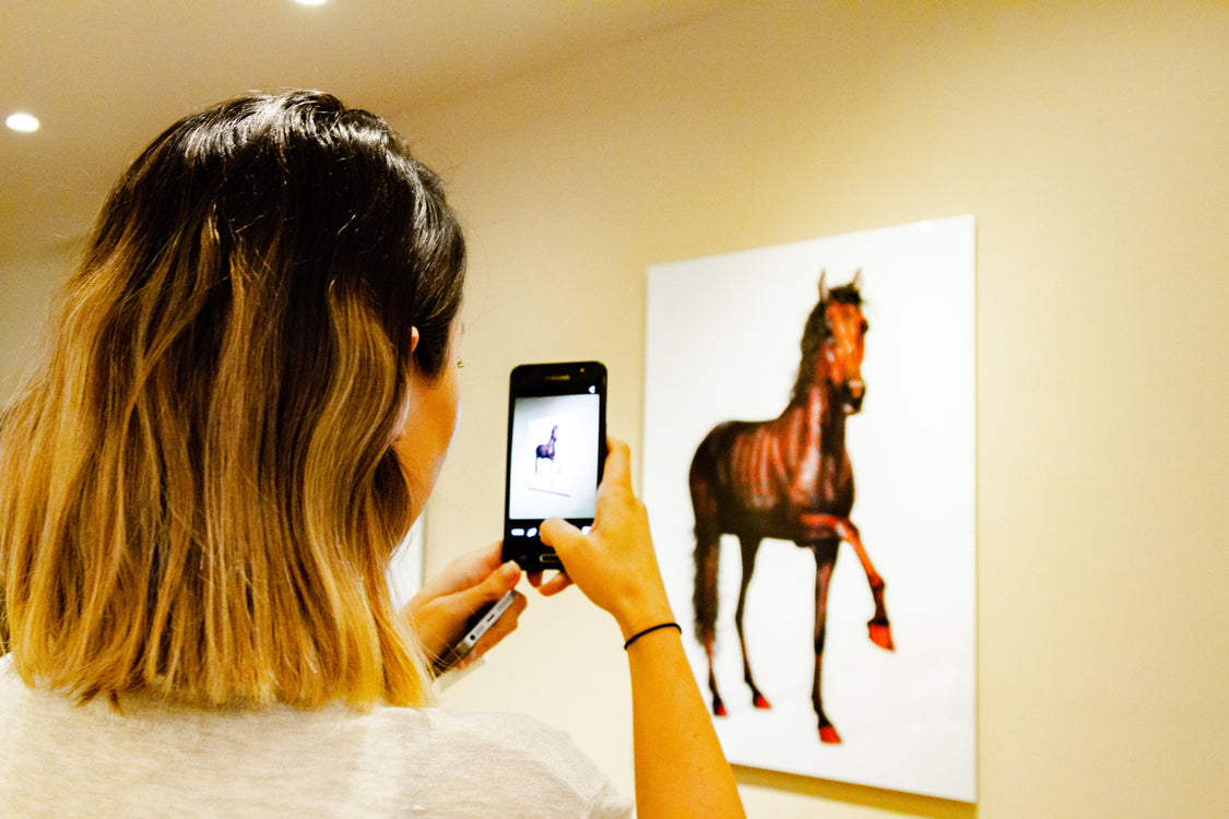 'Horse Whispers' preview at Sofitel