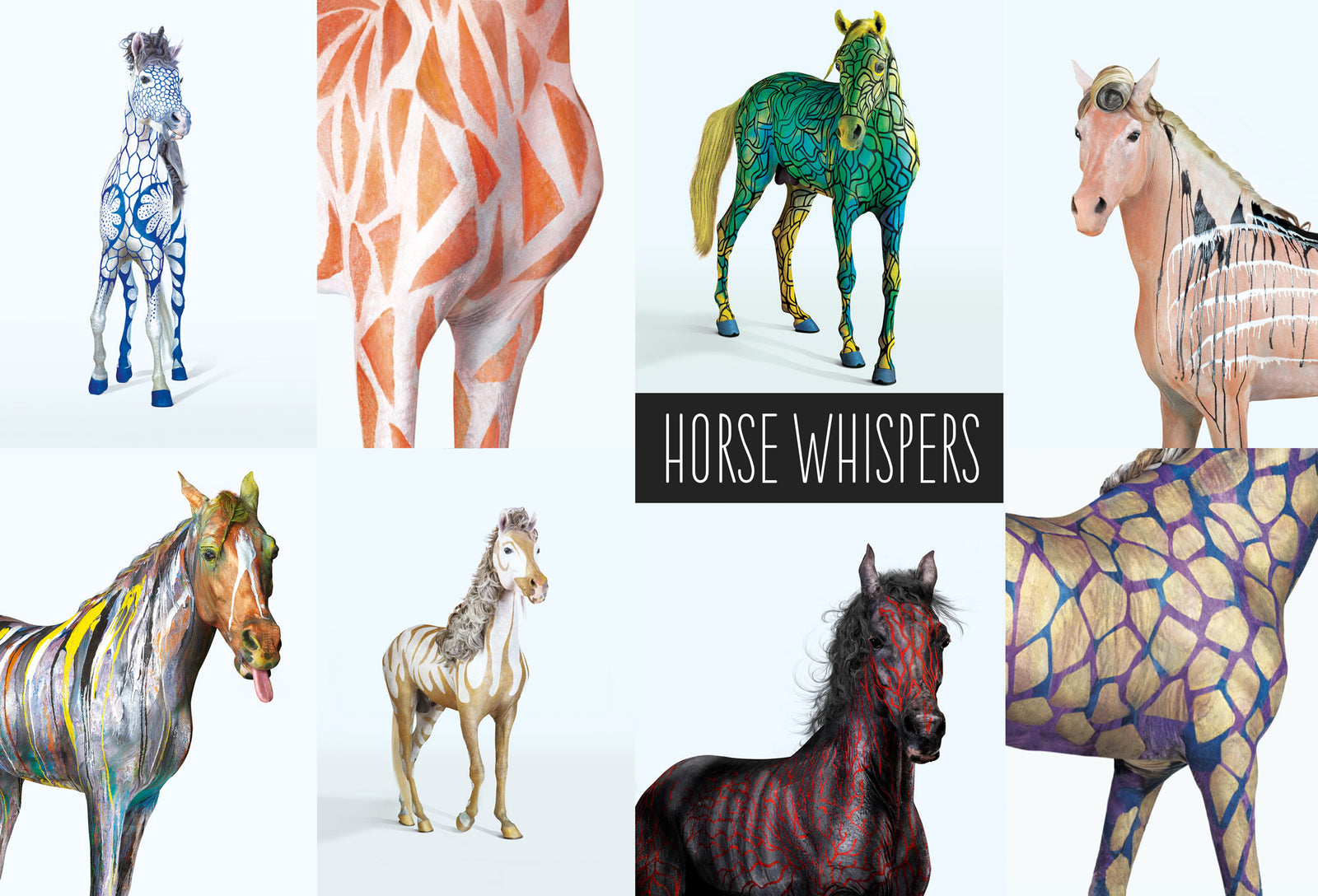 horse whispers by Johny Dar, worldwide the first painted horse
