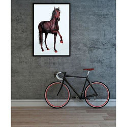 HORSE WHISPERS 01 - limited signed photography edition