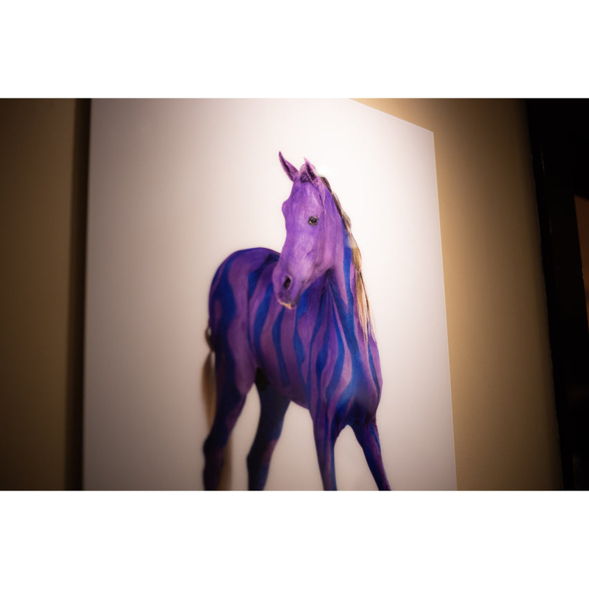 'Horse Whispers' Preview at Sofitel St James London