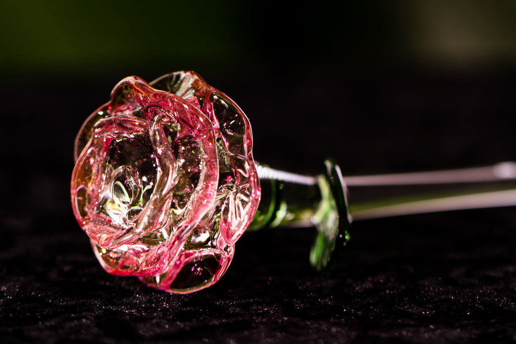 Ashes in Glass Rose