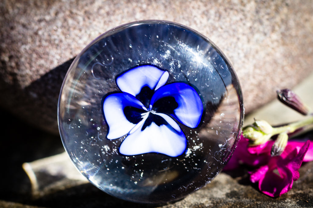 violet flower with cremation ash in glass