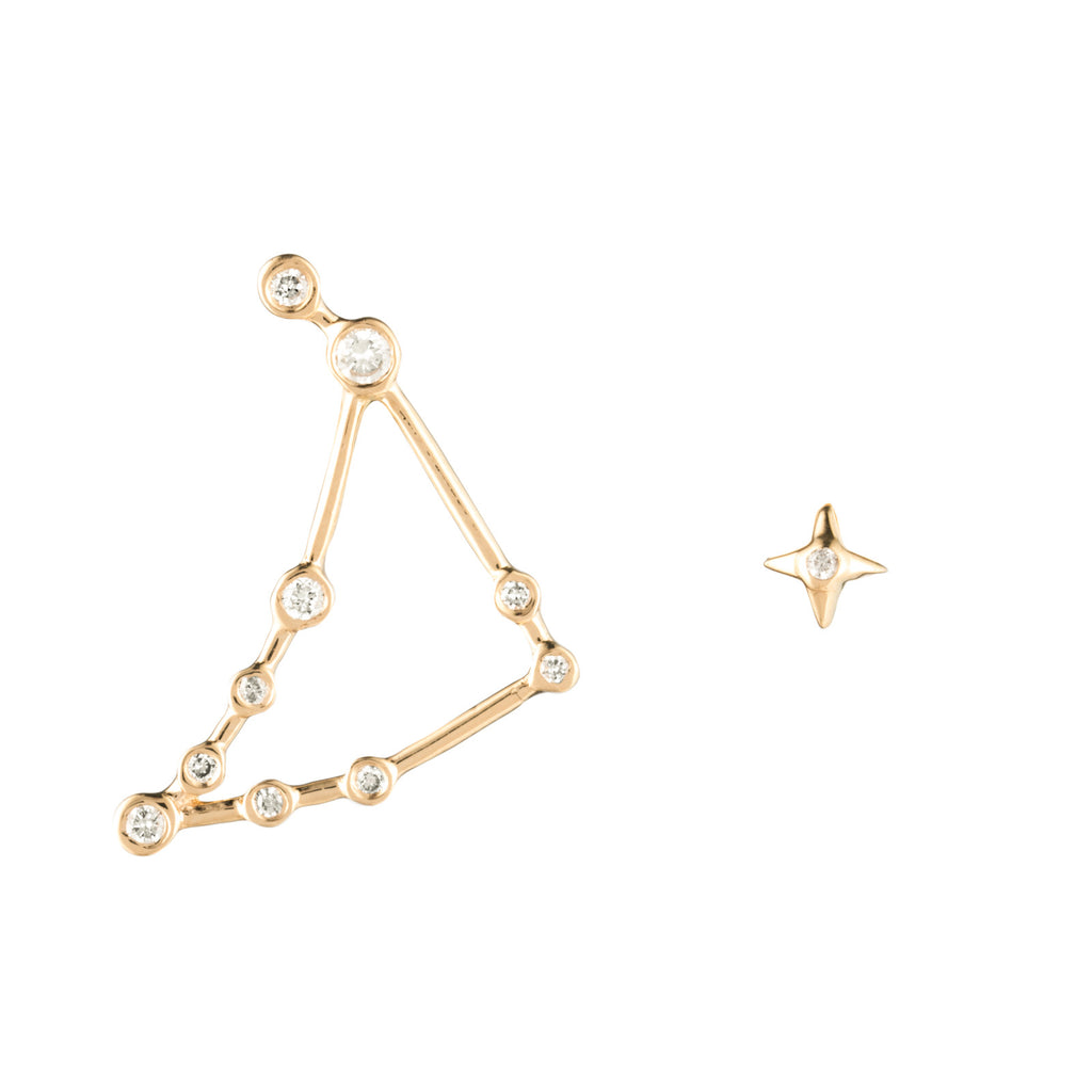 Zodiacs 14k & Diamond Capricorn + Earth Stud Set - Photo
