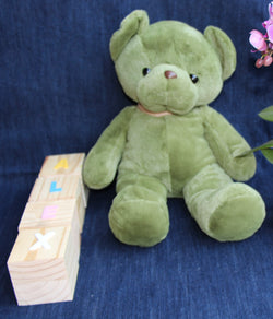 Big Green Teddy Soft Toy