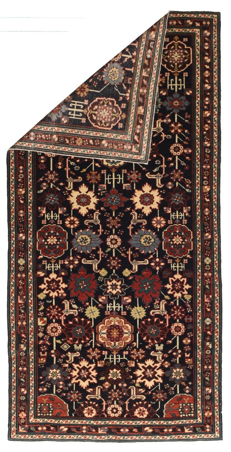 Indian Shirvan Rug