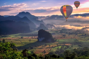 Hot air balloon over the Field - 02100 - Wall Murals Printing - wall art