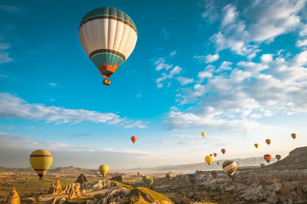 Hot air Balloon - 02120 - Wall Murals Printing - wall art