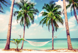 Hammock on the Beach - 02161 - Wall Murals Printing - wall art
