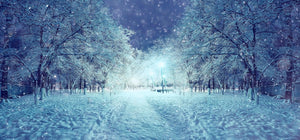 Beautiful Snow Landscape  - 02189 - Wall Murals Printing - wall art