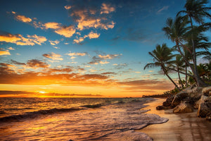 Beautiful Sunset on the Beach  - 02193 - Wall Murals Printing - wall art