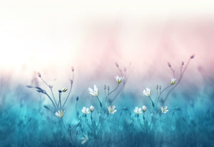 Beautiful little Flowers  - 02230 - Wall Murals Printing - wall art