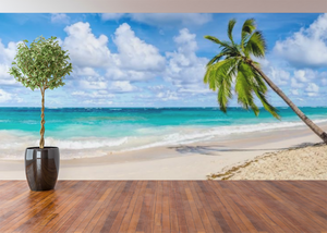 Beach & Palm Trees Panoramic  - 02222 - Wall Murals Printing - wall art