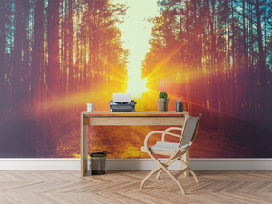 Sunset trough the Trees   - 0233 - Wall Murals Printing - wall art