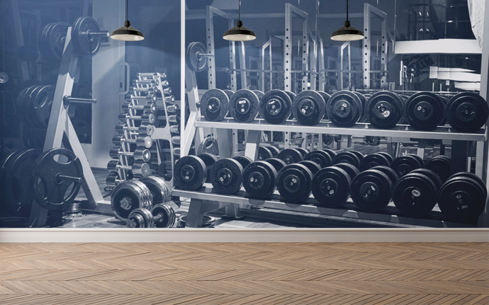 Gym ambiance  - 054 - Wall Murals Printing - wall art