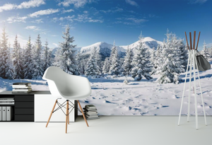Beautiful Snow Landscape  - 02190 - Wall Murals Printing - wall art