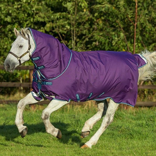 "Amigo ""Bravo Turnout Blanket/Hood – 250G Fill – Purple"