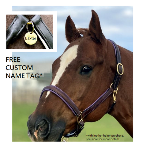 Fancy Stitched Padded Leather Halter-Free Custom Name Tag*