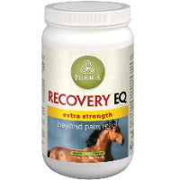 Recovery EQ Extra Strength – 1 KG