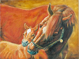 Canvas Horse Art