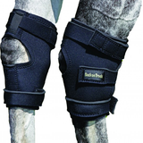 Back on Track – Therapeutic Hock Boots w/Holes