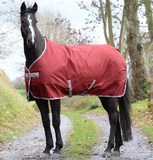 "Bucas ""Freedom 150"" Stable Blanket"