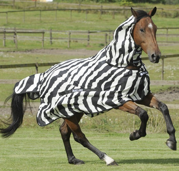 "Bucas ""Buzz-Off"" Zebra Fly Sheet - Full Neck"
