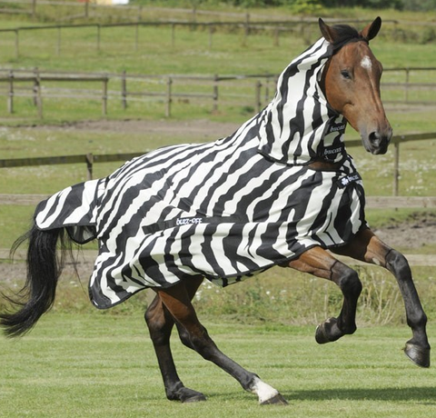 "BUCAS ""Buzz-Off Zebra"" Full Neck fly sheet"
