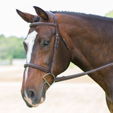 Exselle Single-Crown Hunter Bridle Fancy Stitched