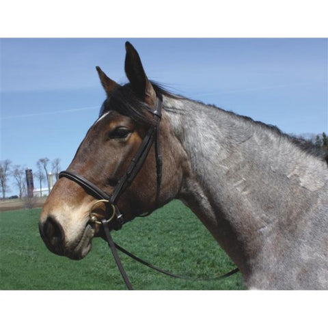 "HDR ""Advantage"" Draft Bridle"