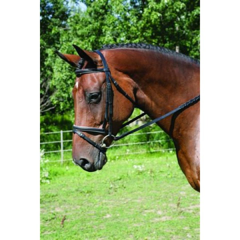 "HDR ""Advantage"" Dressage Bridle with Flash"