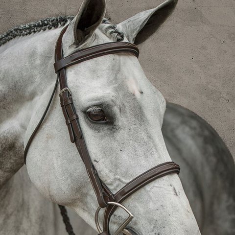 "HDR ""Pro"" Stress Free Fancy Stitched Padded Bridle"