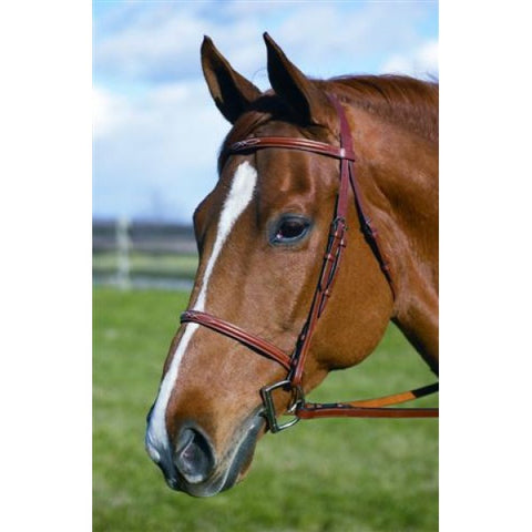 "HDR ""Pro"" Fancy Raised Padded Bridle"