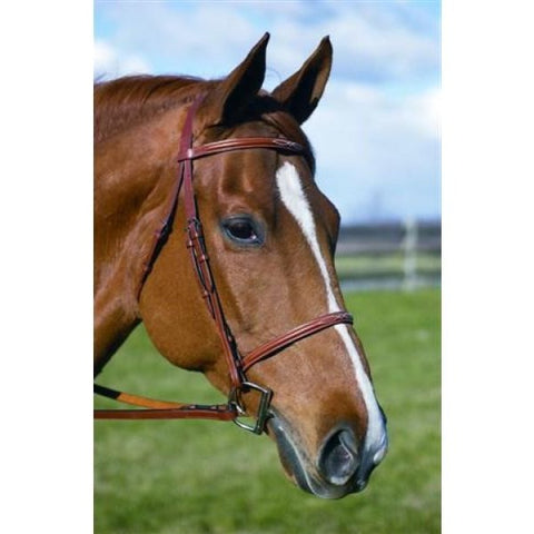 "HDR ""Pro"" Stress Free Fancy Raised Bridle"