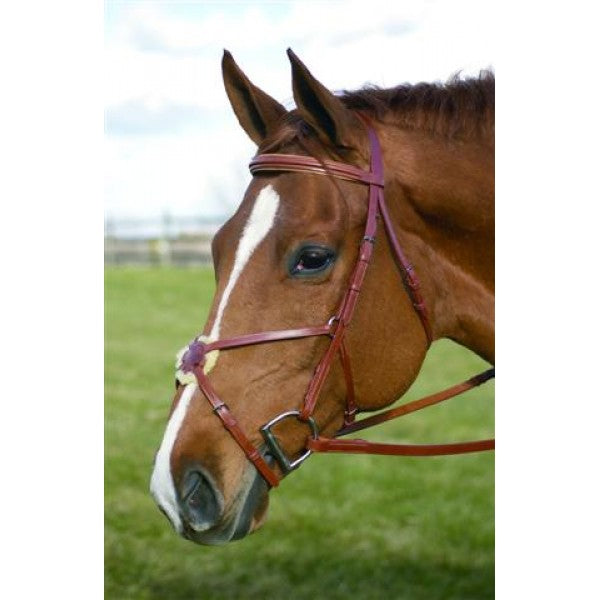 "HDR ""Pro"" Figure 8 Bridle + Free Name Tag"
