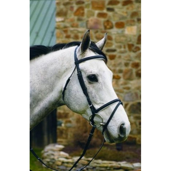 "HDR ""Pro"" Padded Dressage Bridle"