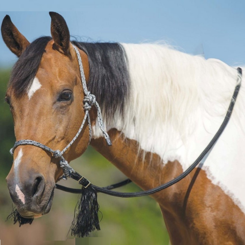 Mustang Deluxe Bitless Bridle with Rein