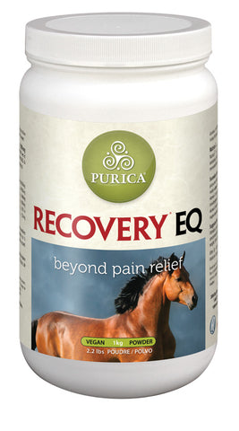 Recovery EQ – 1KG