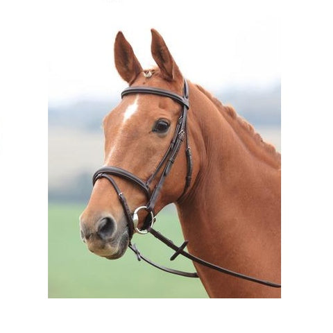 Sherwood Padded Bridle with Flash