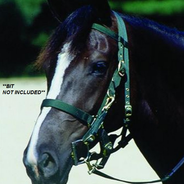Web Halter/Bridle with Reins