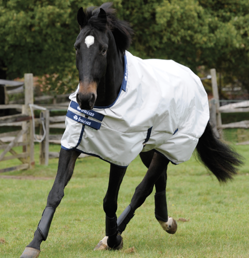 Bucas SunShower Rain Horse Sheet