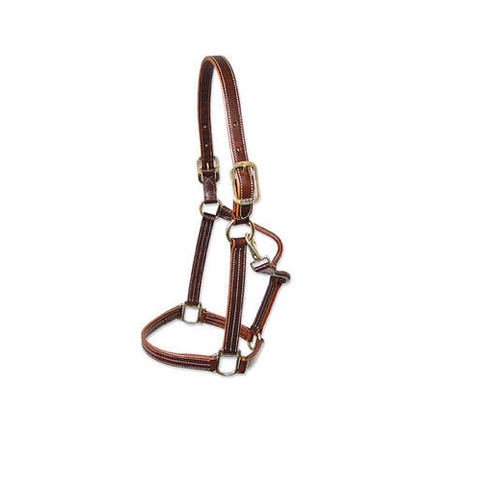 "Walsh ""British"" Halter"