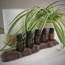 Natural Driftwood Essential Oil Holder