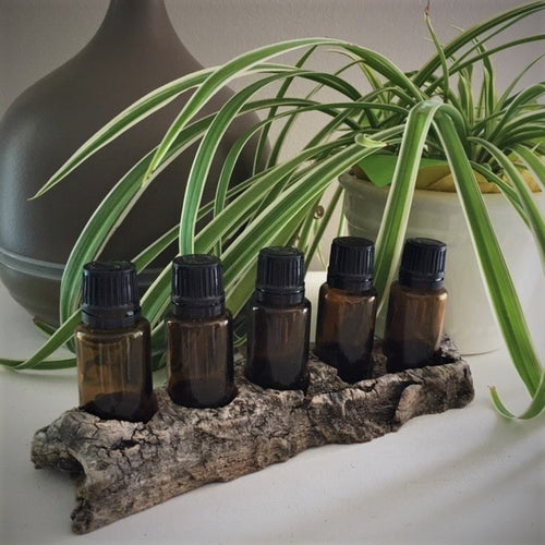 15ml Natural Driftwood Essential Oil Holder