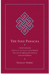 The Sole Panecea #18