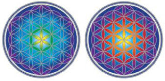 Flower of Life Decal #14